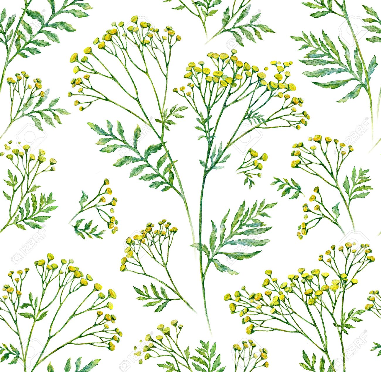 37297012-seamless-flower-with-leaf-pattern-background-botanical-illustration-watercolor-painting-